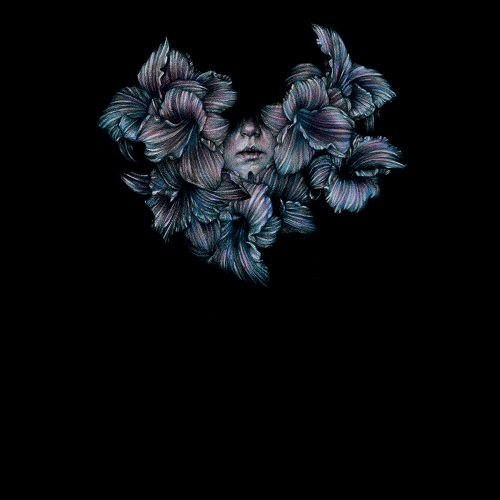 A Lot Like Birds - Divisi
